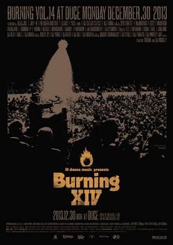 burning250.jpg
